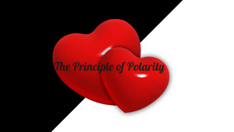 The Principle of Polarity