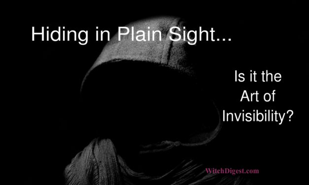 Hiding in Plain Sight – The Art of Invisibility