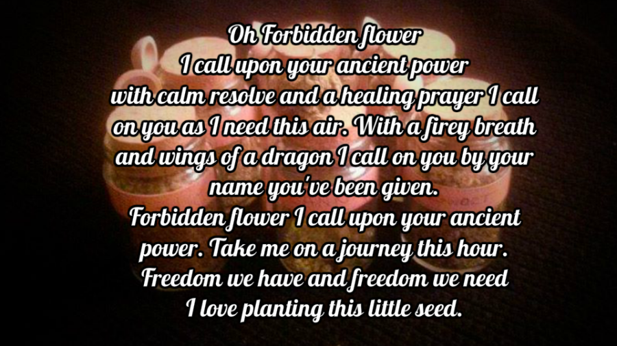 The Forbidden Flower